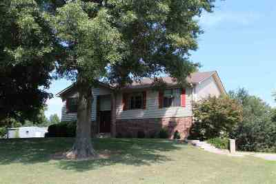 Dyersburg Single Family Home For Sale: 3296 Millsfield Hwy