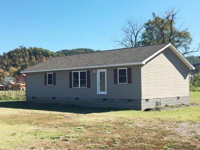 Tellico Plains Single Family Home For Sale: 420 Cherohala Skyway
