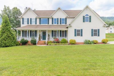 Lafollette Single Family Home For Sale: 149 Chelsea Lane