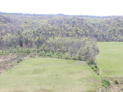 Rogersville Residential Lots & Land For Sale: 558 Spruce Pine Road
