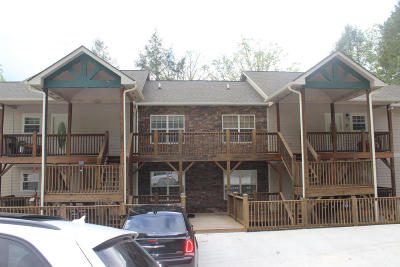 Campbell County Condo/Townhouse For Sale: 123 N Bridge Lane #D