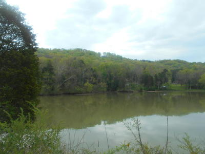 Meigs County, Rhea County, Roane County Residential Lots & Land For Sale: 134 Bream Lane