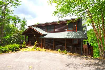 Sevierville Single Family Home For Sale: 4640 Whetstone Rd