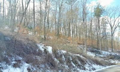 Tazewell TN Residential Lots & Land For Sale: $17,800