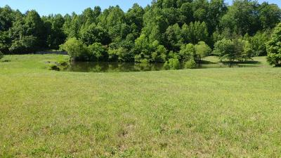 Anderson County Residential Lots & Land For Sale: 125 Rock Bridge Greens Blvd