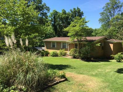 Knoxville Single Family Home For Sale: 613 Starlite Lane