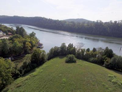 Meigs County, Rhea County, Roane County Residential Lots & Land For Sale: Marble Bluff Dr, Lot 50