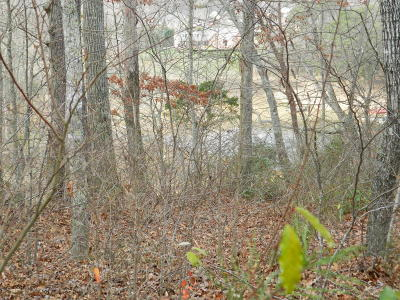 Residential Lots & Land For Sale: Bluff Trace Lane