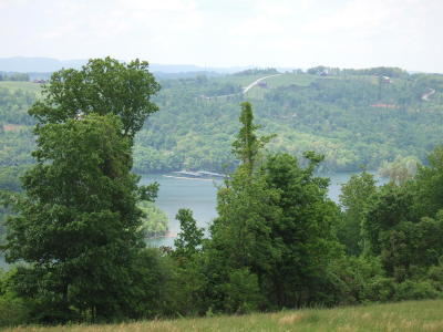 Maynardville TN Residential Lots & Land For Sale: $125,000