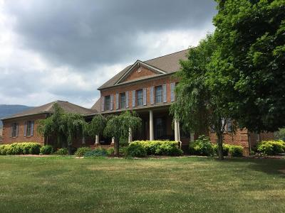 Lafollette Single Family Home For Sale: 152 Brown Drive