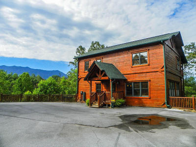 Gatlinburg Single Family Home For Sale: 802 Great Smoky Way