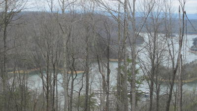Union County Residential Lots & Land For Sale: Lot 18 Sara Lane
