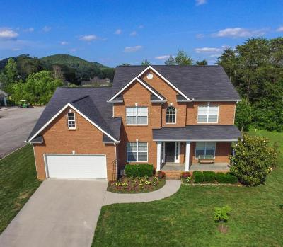 Knoxville Single Family Home For Sale: 2754 Rushland Park Blvd