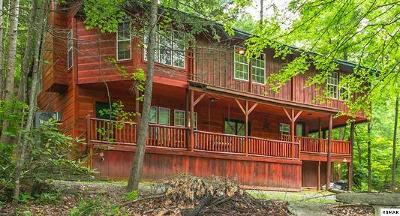 Sevierville Single Family Home For Sale: 1940 Wears Valley Rd
