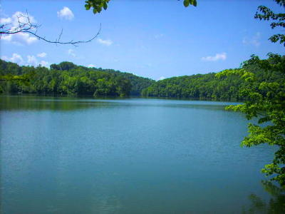 Campbell County Residential Lots & Land For Sale: Cove Point Rd