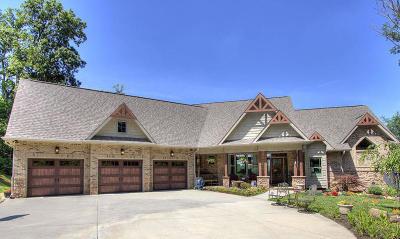 Loudon Single Family Home For Sale: 485 Quiet River Lane