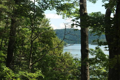 Campbell County Residential Lots & Land For Sale: Lot 6 Norris Point Rd E