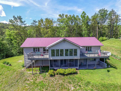 Sevierville Single Family Home For Sale: 3206 Hickey Rd