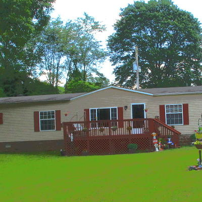 Tazewell Single Family Home For Sale: 923 Essary Rd