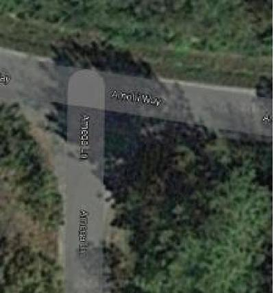 Residential Lots & Land For Sale: 168 Amohi Way