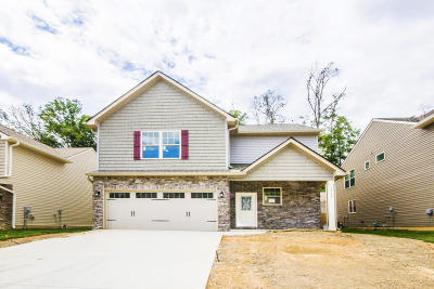 Knoxville Single Family Home For Sale: 12137 Woodhollow Lane