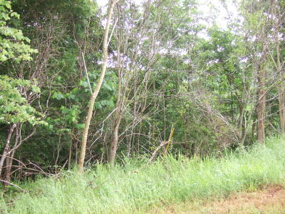 Residential Lots & Land For Sale: Lot 320 Shoreside Rd