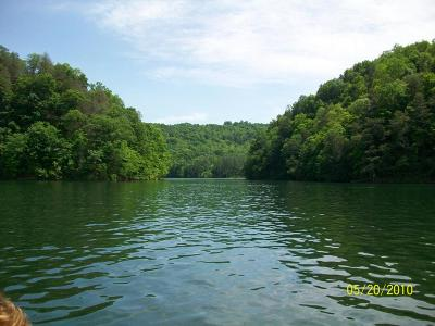 Washburn TN Residential Lots & Land For Sale: $75,000
