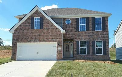 Knoxville Single Family Home For Sale: 12637 Hartsfield Lane