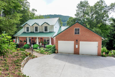 Caryville Single Family Home For Sale: 220 Hemlock Bluff Lane