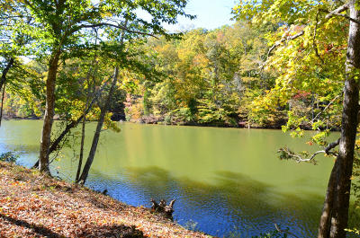 Meigs County, Rhea County, Roane County Residential Lots & Land For Sale: Lot 10 Waterfront Way Way