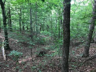 New Tazewell TN Residential Lots & Land For Sale: $17,000
