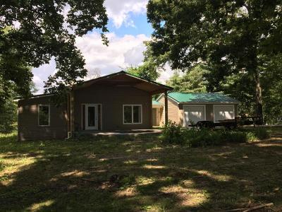 Knoxville Single Family Home For Sale: 2908 Dewine Rd