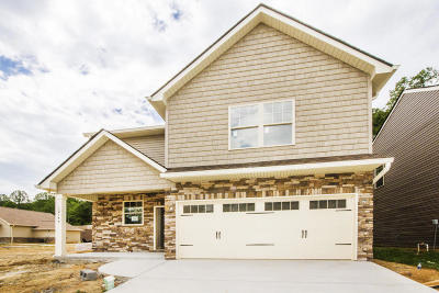 Knoxville Single Family Home For Sale: 12149 Woodhollow Lane