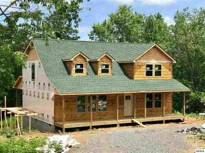 Sevierville Single Family Home For Sale: 2942 Covemont Rd