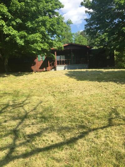 Union County Single Family Home For Sale: 5336 Maynardville Hwy