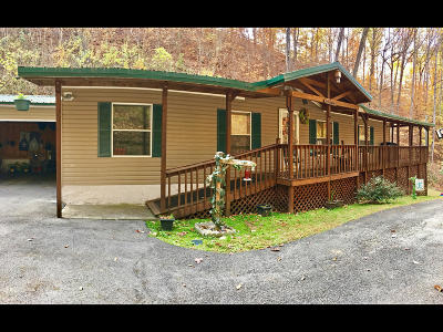 Pigeon Forge Single Family Home For Sale: 2403 Goldrush Rd