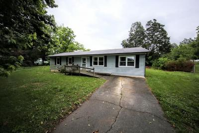 Sevier County Single Family Home For Sale: 341 Blue Ridge Lane