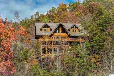 Gatlinburg Single Family Home For Sale: 337 Overview Drive