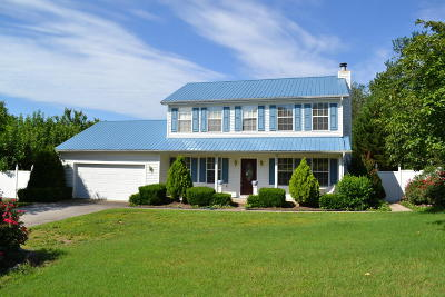 Knoxville Single Family Home For Sale: 1209 Highvue Drive