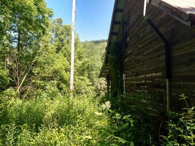 Residential Lots & Land Sold: 1542 Snake Hollow