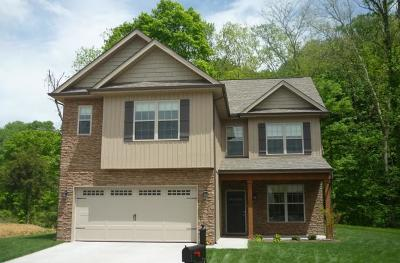 Knoxville Single Family Home For Sale: Lot 12 Peake Lane