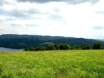 New Tazewell TN Residential Lots & Land Closed: $21,000