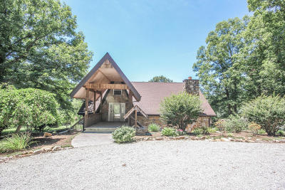 Walland Single Family Home For Sale: 528 Patterson Rd
