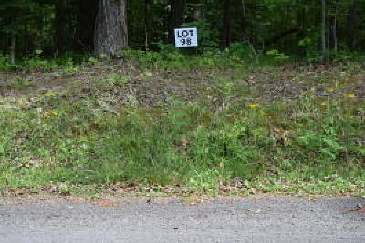 Residential Lots & Land For Sale: Lot 98 Bending Bow Drive