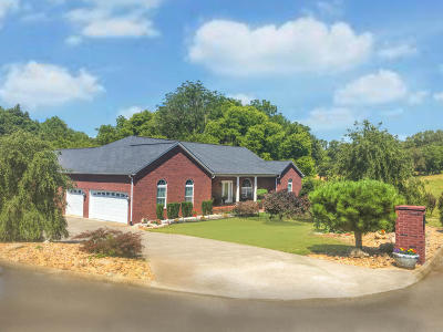 Sevierville Single Family Home For Sale: 1402 Alum Cave