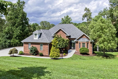 Loudon County, Knox County, Blount County Single Family Home For Sale: 1260 Windridge Rd