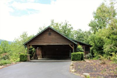 Gatlinburg Single Family Home For Sale: 4705 Townsend Drive
