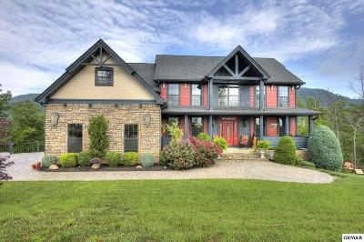 Sevierville Single Family Home For Sale: 2968 Smokley Bluff Tr