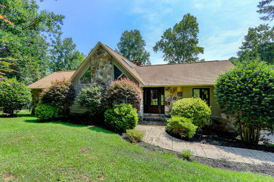 Meigs County, Rhea County, Roane County Single Family Home For Sale: 118 Henley Point