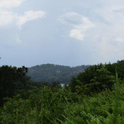 Campbell County, Anderson County, Union County, Claiborne County, Grainger County Residential Lots & Land For Sale: Cameron Loop